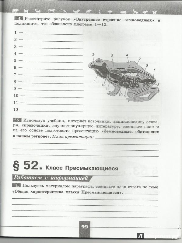 Иллюстрация 4 из 6 для Биология. 7 класс. Рабочая тетрадь. ФГОС - Пасечник, Калинова, Суматохин, Швецов | Лабиринт - книги. Источник: todorik