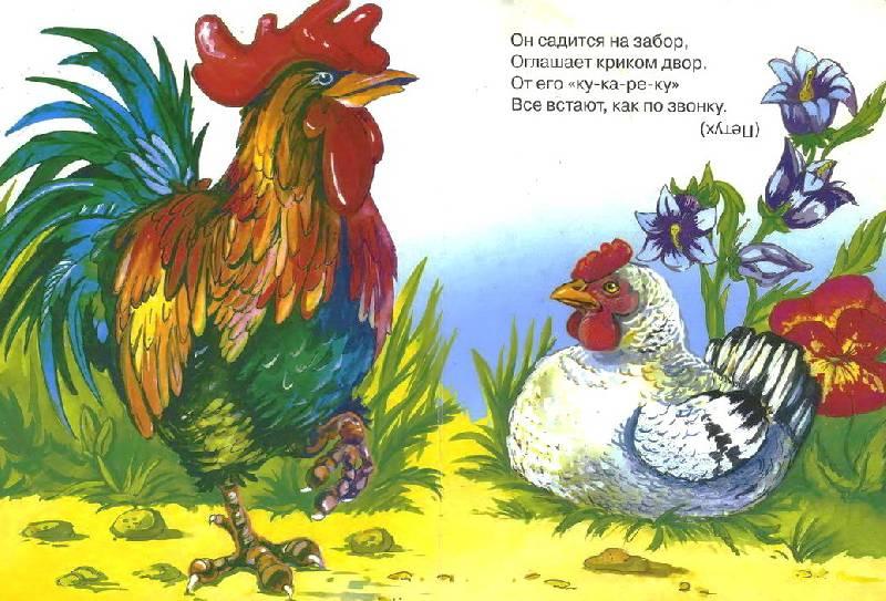 Иллюстрация 1 из 16 для Загадки - Ирина Яворовская | Лабиринт - книги. Источник: Machaon