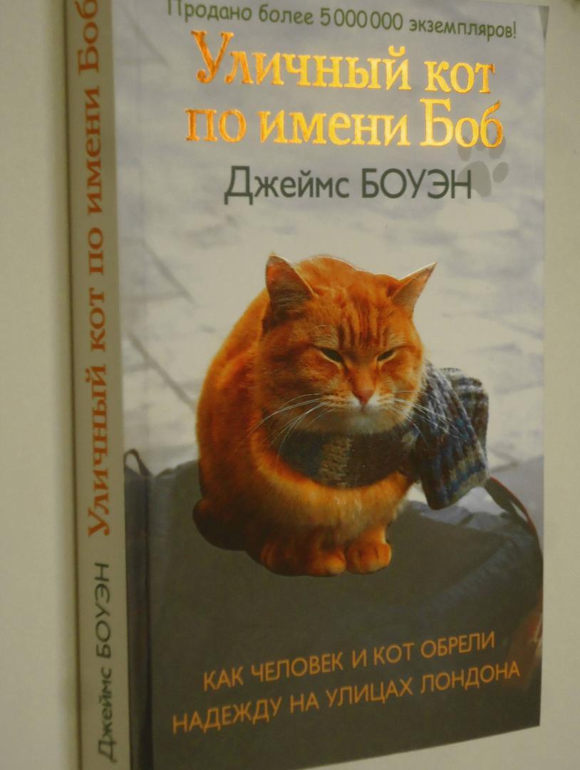 Иллюстрация 20 из 31 для Уличный кот по имени Боб. Как человек и кот обрели надежду на улицах Лондона - Джеймс Боуэн | Лабиринт - книги. Источник: Затерянная