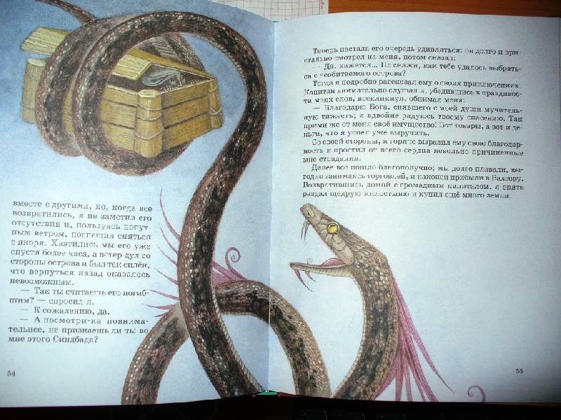 Иллюстрация 22 из 25 для Все путешествия Синдбада   Лабиринт - книги. Источник: Julykum