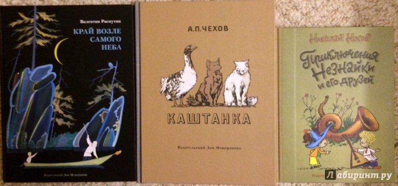 Иллюстрация 15 из 25 для Каштанка - Антон Чехов   Лабиринт - книги. Источник: Наталья Л.