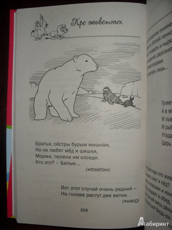 Иллюстрация 5 из 5 для Лучшие загадки обо всем на свете   Лабиринт - книги. Источник: Лена Андреева
