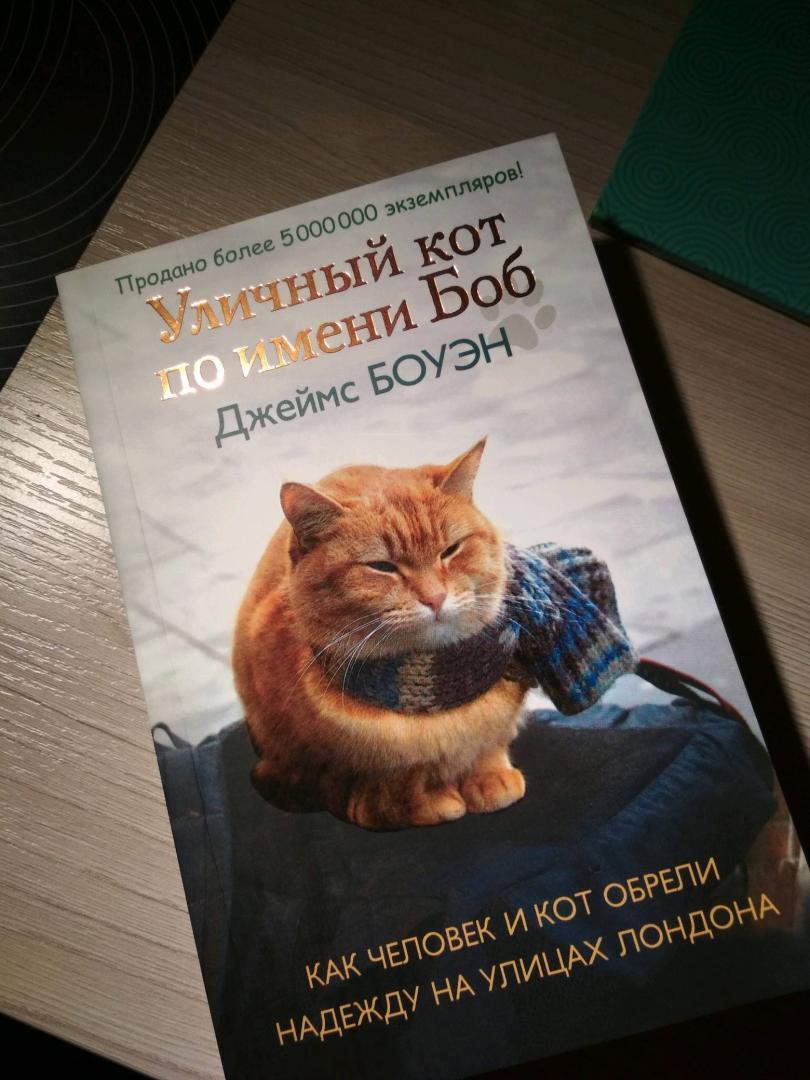 Иллюстрация 6 из 30 для Уличный кот по имени Боб. Как человек и кот обрели надежду на улицах Лондона - Джеймс Боуэн | Лабиринт - книги. Источник: Лабиринт
