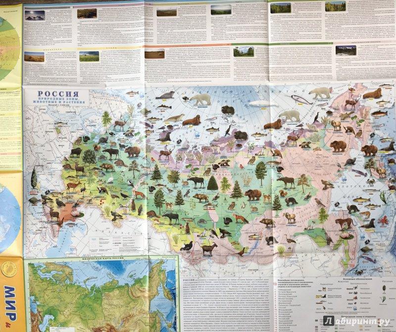 карта россии с картинками животных предлагаете