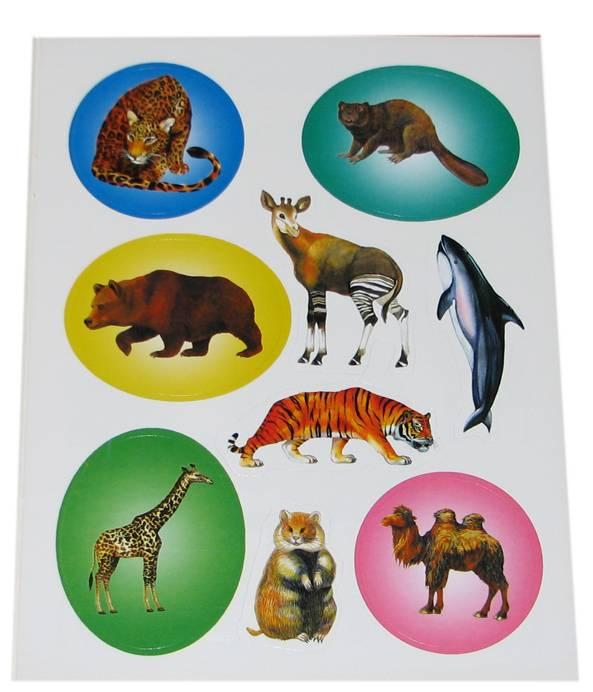 Иллюстрация 1 из 2 для В мире животных - Юрий Гурин | Лабиринт - книги. Источник: *Мария*