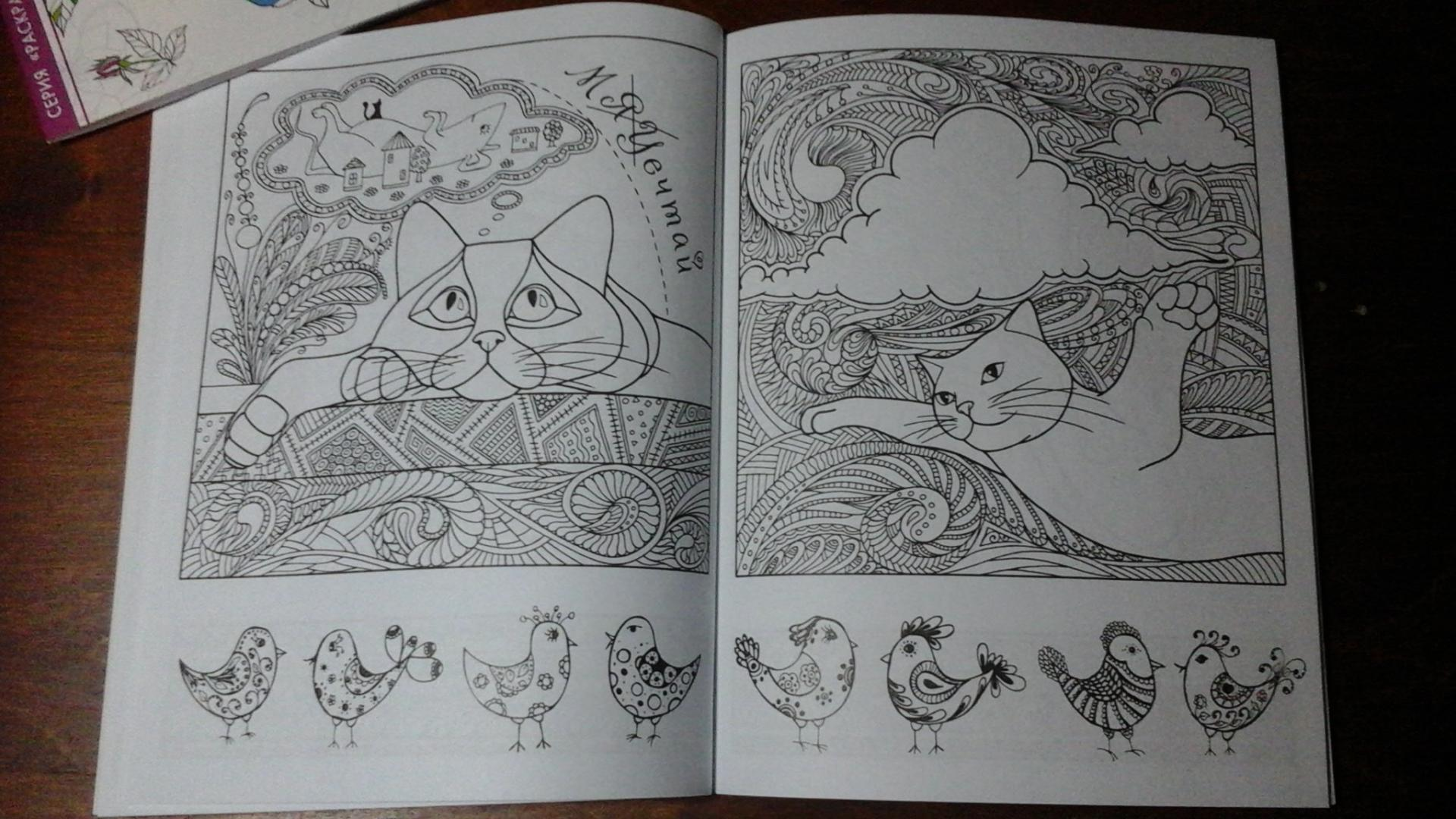 Иллюстрация 18 из 23 для Котомудрости. Раскраска для ...