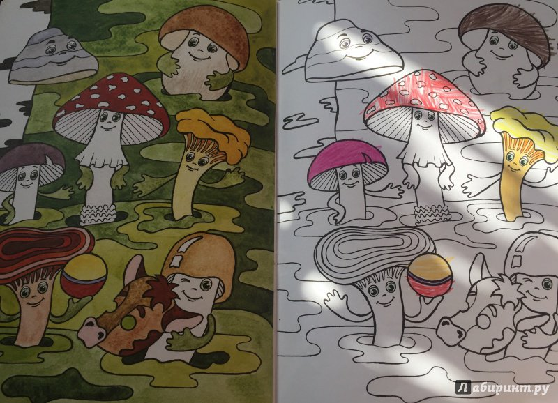 Иллюстрация 5 из 25 для Грибное лукошко (+ раскраска и ...