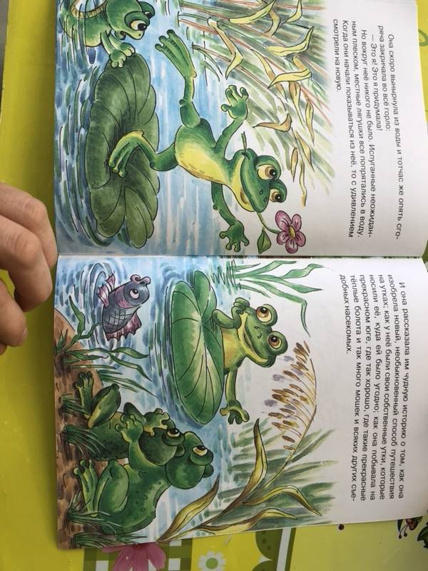 Иллюстрация 16 из 16 для Лягушка-путешественница - Всеволод Гаршин   Лабиринт - книги. Источник: Кудашкина  Татьяна