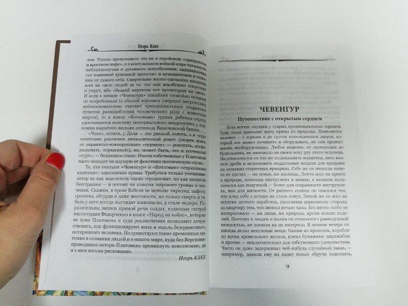 Иллюстрация 6 из 34 для Чевенгур - Андрей Платонов | Лабиринт - книги. Источник: dbyyb