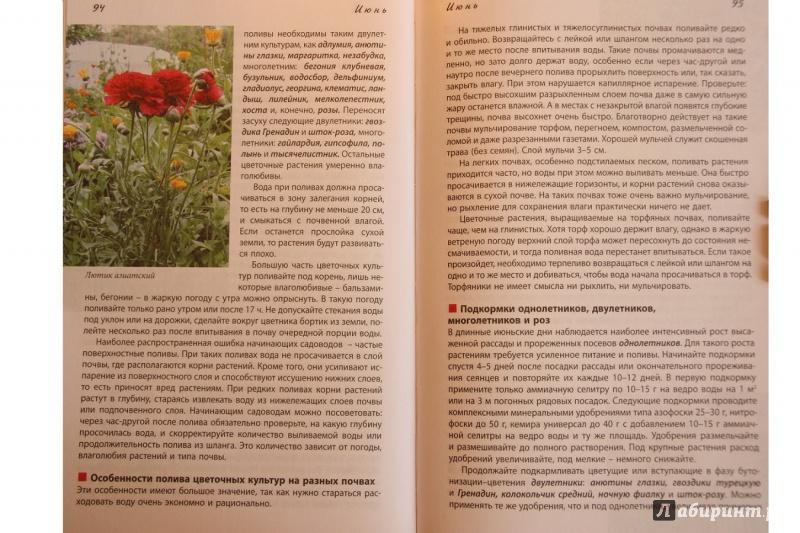 Иллюстрация 9 из 17 для Новый календарь цветовода - Луиза Китаева | Лабиринт - книги. Источник: С  Т