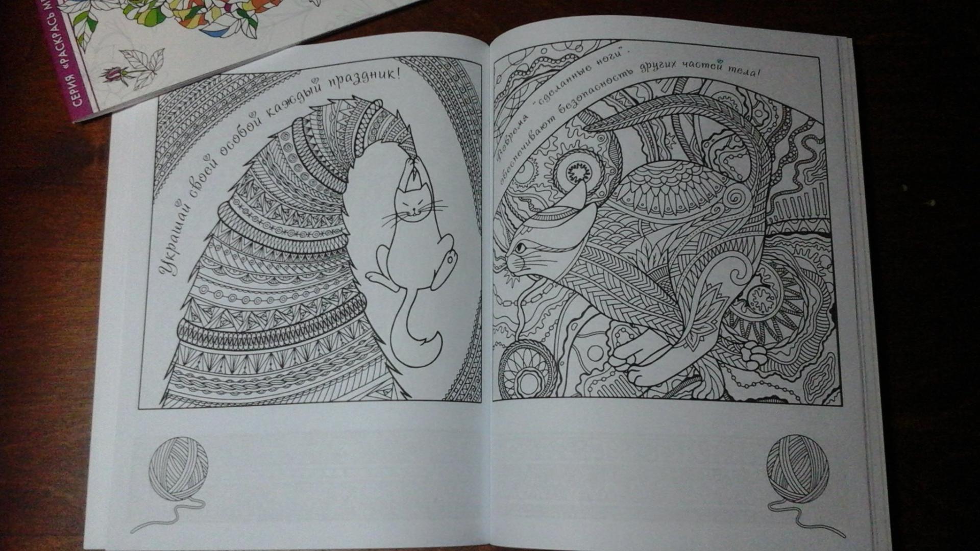 Иллюстрация 21 из 23 для Котомудрости. Раскраска для ...