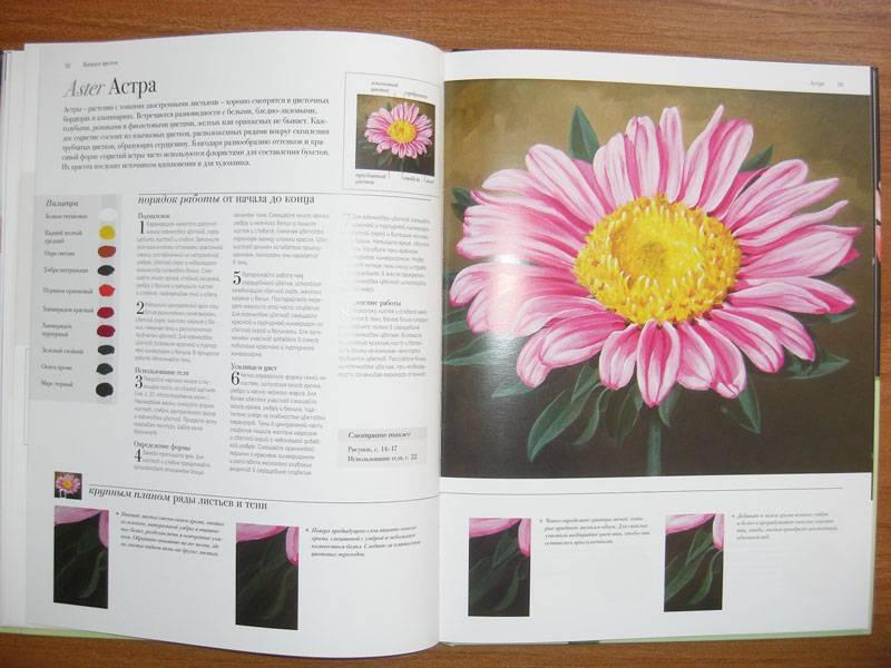Иллюстрация 14 из 20 для Акриловая живопись. Рисуем цветы - Лекси Санделл   Лабиринт - книги. Источник: Gradara