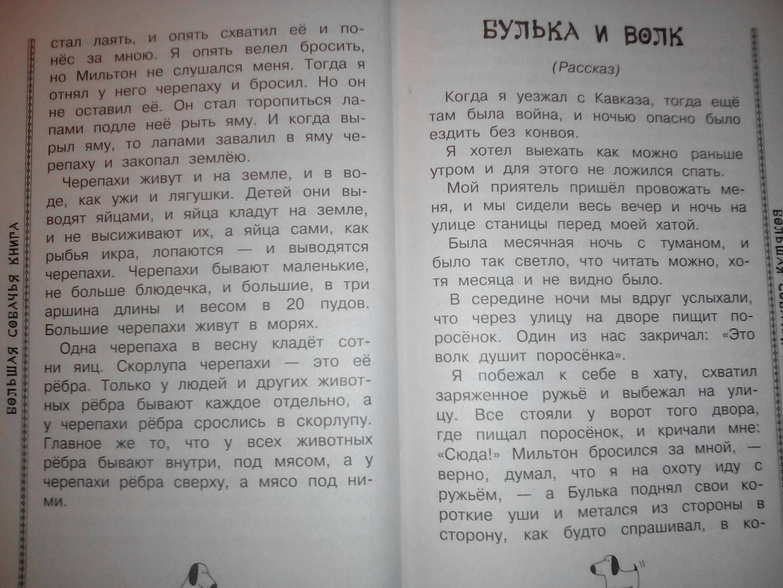Иллюстрация 18 из 19 для Большая собачья книга - Чехов, Драгунский, Черный | Лабиринт - книги. Источник: харина  елена