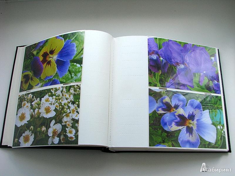 Иллюстрация 5 из 5 для Фотоальбом на 200 фотографий (VN-4R200PPBB) | Лабиринт - сувениры. Источник: Уколкин  Дмитрий Валерьевич