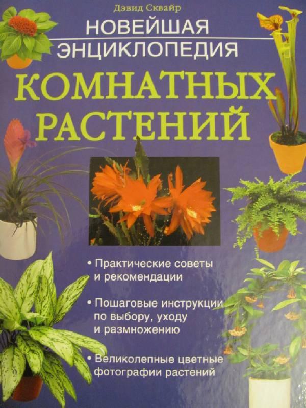 комнатные растения энциклопедия с картинками сейчас есть возможность