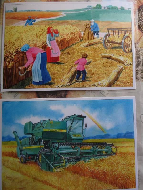 Иллюстрации о сельском хозяйстве