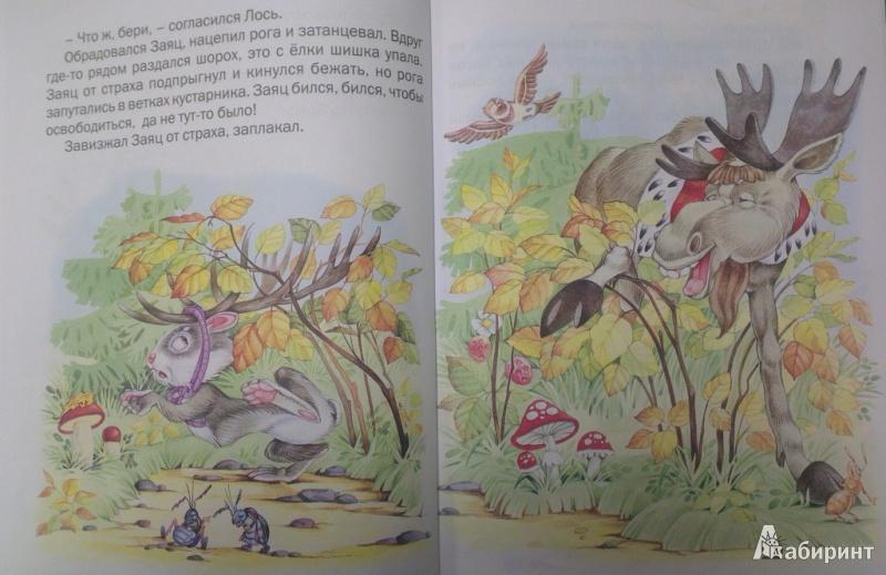 От чего у зайца длинные уши сказка картинки