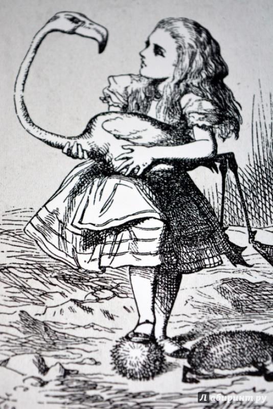 Алиса кэрролл в картинках
