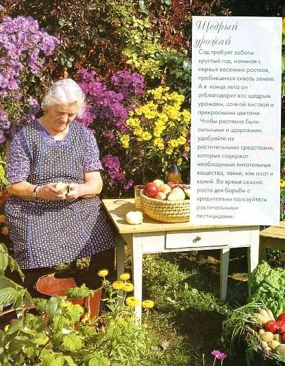 Иллюстрация 1 из 48 для Полезные советы из бабушкиной шкатулки | Лабиринт - книги. Источник: Лабиринт-чит