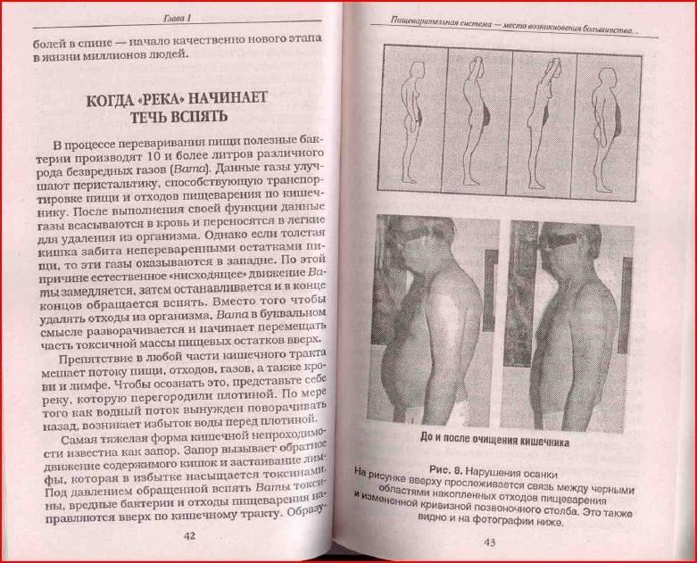 Иллюстрация 3 из 8 для Очистите свой организм от болезней - Андреас Мориц   Лабиринт - книги. Источник: alexss