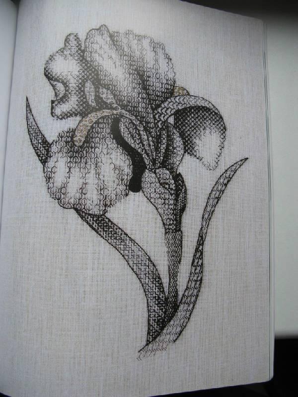 Иллюстрация 26 из 31 для Английская королевская школа вышивания - Салли Сандерс   Лабиринт - книги. Источник: Юта