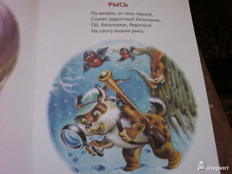 Иллюстрация 9 из 11 для Зимние забавы - С. Родин   Лабиринт - книги. Источник: Розанова  Елена
