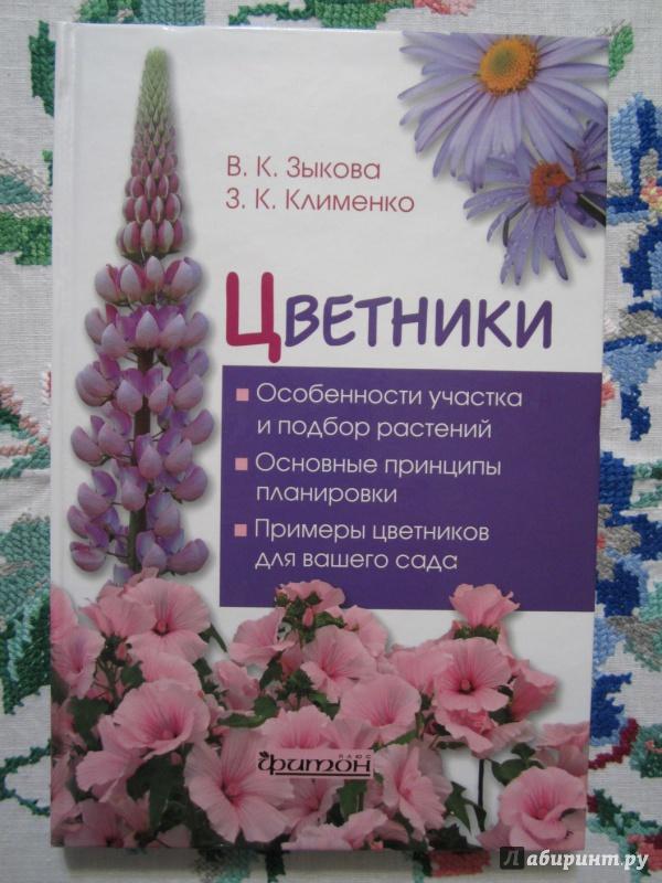 Иллюстрация 1 из 21 для Цветники - Зыкова, Клименко   Лабиринт - книги. Источник: A. Fragaria