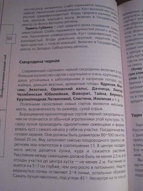 Иллюстрация 12 из 20 для Огород без хлопот - Андрей Туманов | Лабиринт - книги. Источник: Фея Нежности