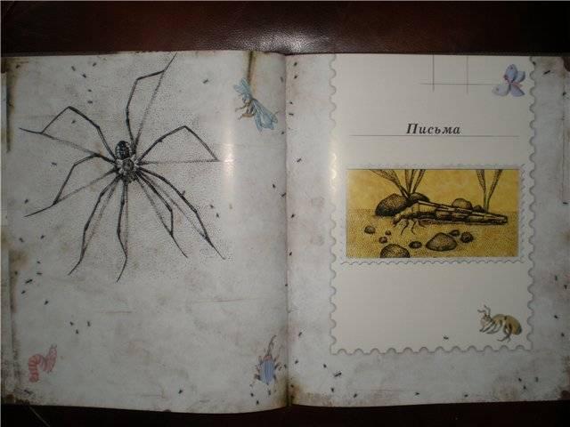 Иллюстрация 41 из 106 для Письма насекомых - Ольга Кувыкина | Лабиринт - книги. Источник: Гостья