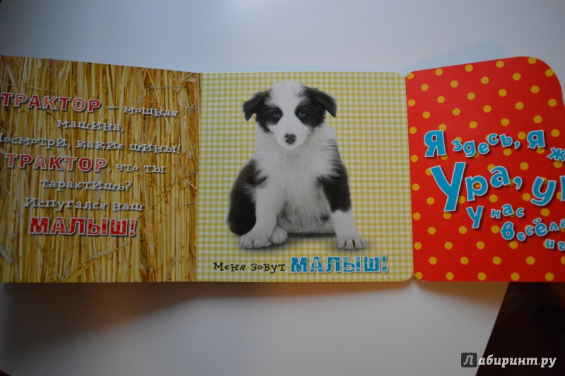 Иллюстрация 19 из 23 для Давай играть! Веселые щенки - Анжела Берлова | Лабиринт - книги. Источник: olya