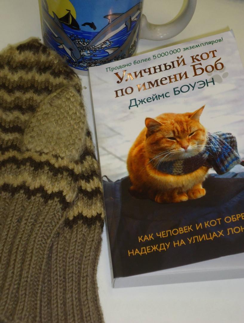 Иллюстрация 21 из 30 для Уличный кот по имени Боб. Как человек и кот обрели надежду на улицах Лондона - Джеймс Боуэн   Лабиринт - книги. Источник: Затерянная