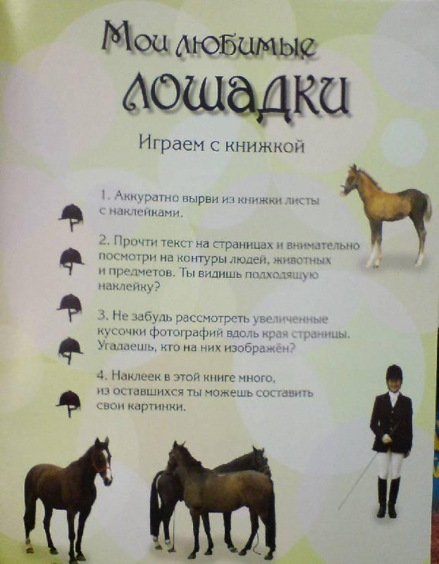 Иллюстрация 1 из 17 для Узнай и наклей. Мои любимые лошадки   Лабиринт - книги. Источник: Настёна