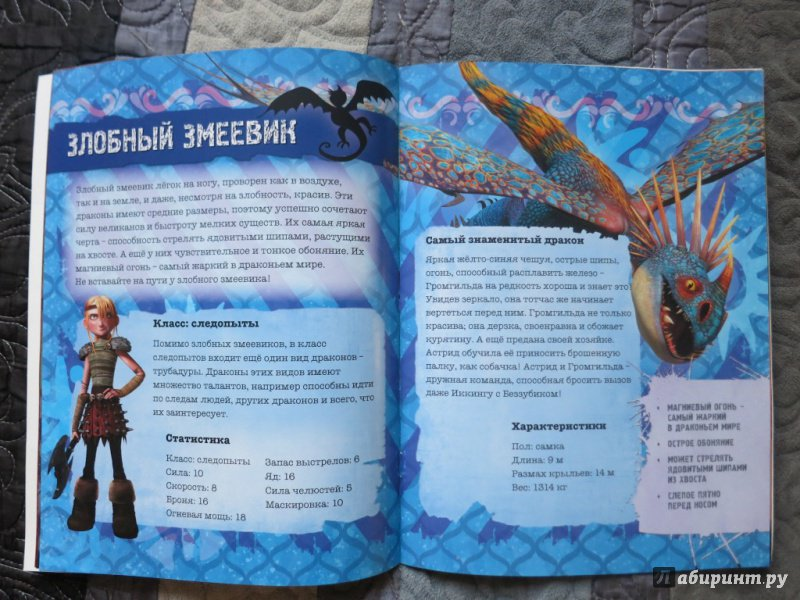 фото книги драконов из как приручить дракона юношеском