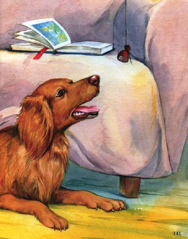 философские рассказы картинки к ним про собаку перми