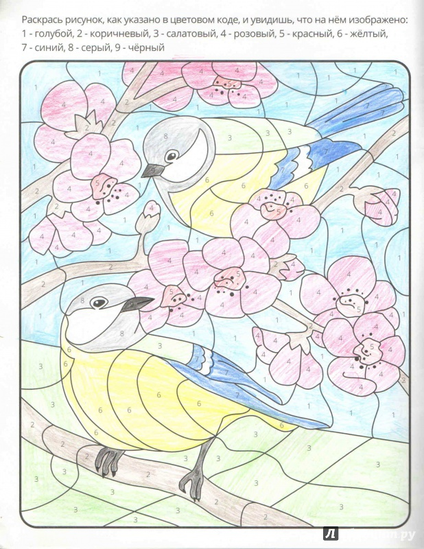 """Иллюстрация 11 из 36 для Раскраска по цифрам """"Времена года ..."""