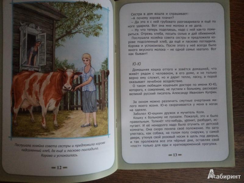 Иллюстрация 6 из 8 для Быть нужным человеку - Белевцева, Жданова | Лабиринт - книги. Источник: Karfagen