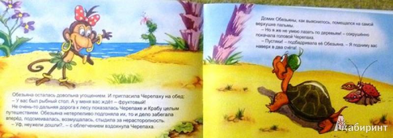 Иллюстрация 2 из 25 для Обезьяна и черепаха - С. Рунге | Лабиринт - книги. Источник: alex-sandr