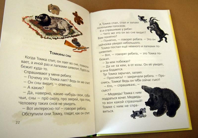 публикация рассказ о животных томка картинки возрастеподрастковом
