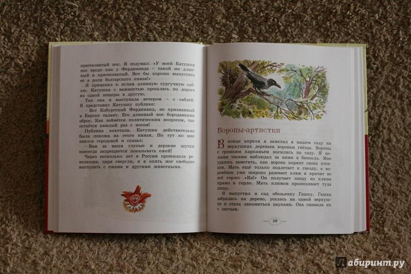 Иллюстрация 25 из 35 для Мои звери - Владимир Дуров | Лабиринт - книги. Источник: дважды