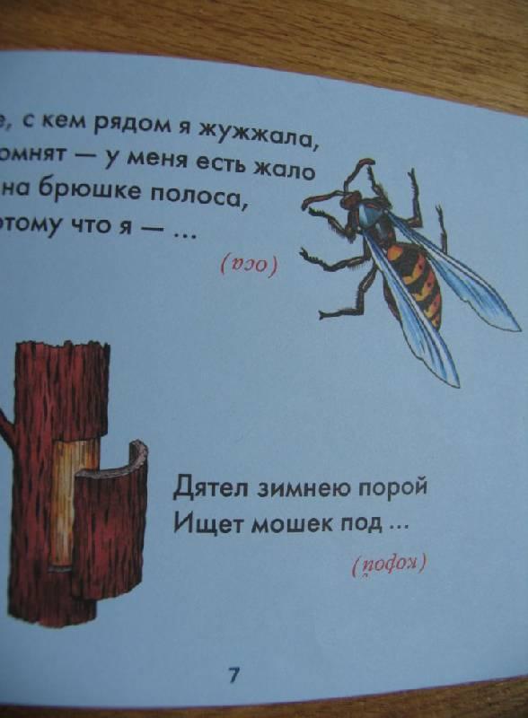 Иллюстрация 1 из 3 для Загадки для малышей - Галина Шалаева | Лабиринт - книги. Источник: ВВС