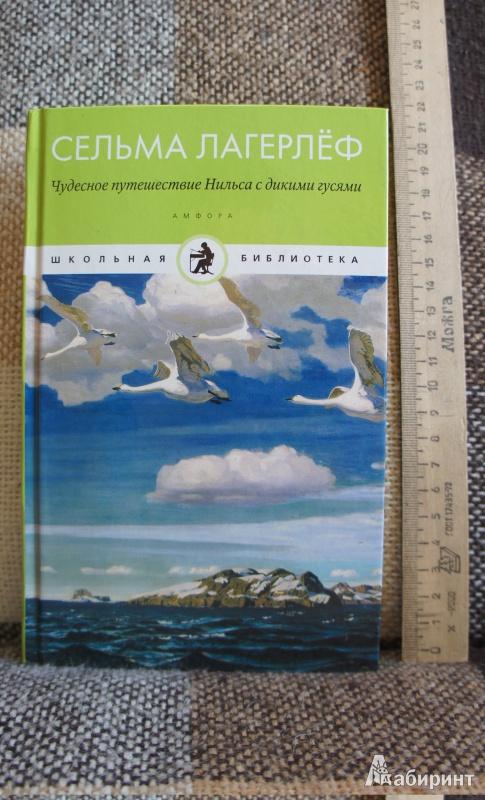 Иллюстрация 2 из 4 для Чудесное путешествие Нильса с дикими гусями - Сельма Лагерлеф   Лабиринт - книги. Источник: Марфа Х.К.