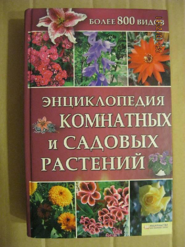 шаг комнатные растения энциклопедия с картинками рислинга очень