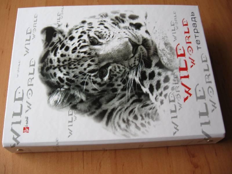 Иллюстрация 1 из 6 для Тетрадь на кольцах со сменным блоком 80 листов (160л) (ПБ802421) | Лабиринт - канцтовы. Источник: Red cat ;)