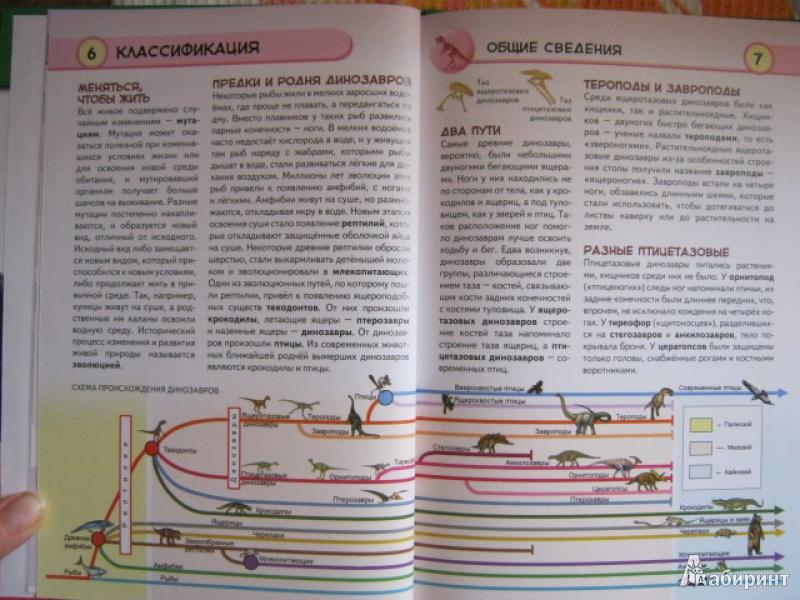 Иллюстрация 6 из 34 для Динозавры. Ящеры мезозойской эры - Юлия Школьник | Лабиринт - книги. Источник: Евгения39