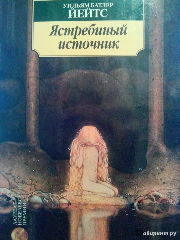 Иллюстрация 1 из 11 для Ястребиный источник - Уильям Йейтс | Лабиринт - книги. Источник: Скочко  Дарья Дмитриевна