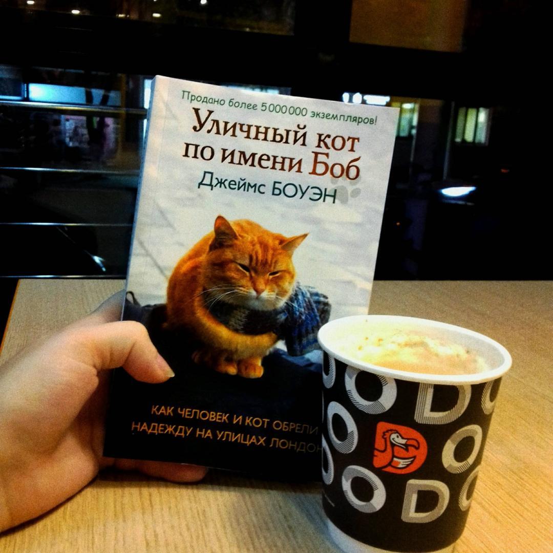 Иллюстрация 23 из 30 для Уличный кот по имени Боб. Как человек и кот обрели надежду на улицах Лондона - Джеймс Боуэн | Лабиринт - книги. Источник: Лабиринт