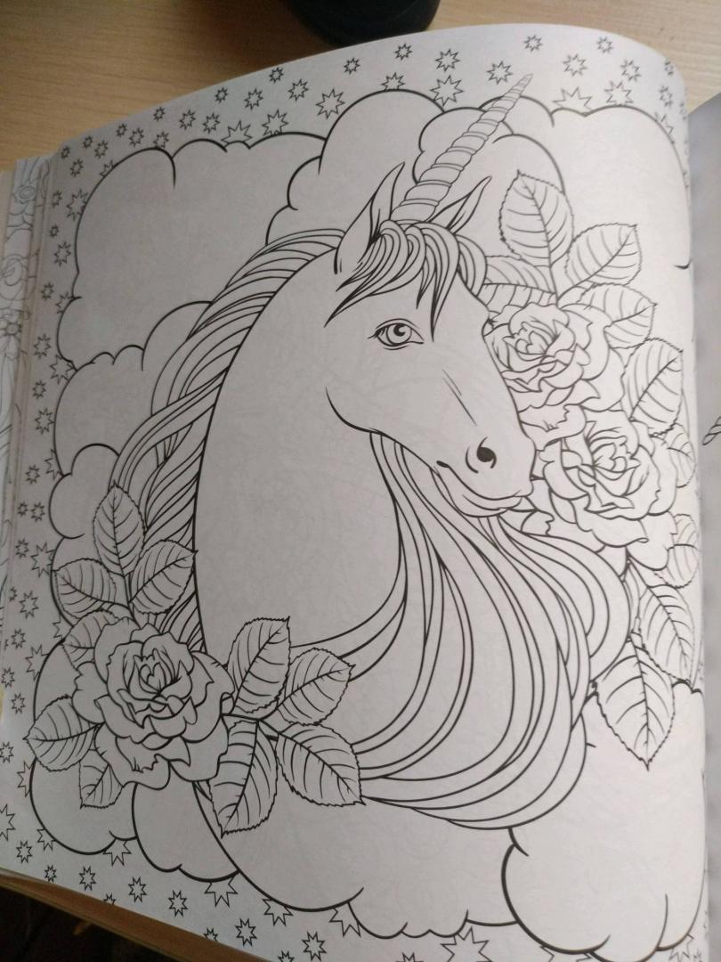 Иллюстрация 29 из 42 для Единороги. Раскраска-антистресс ...