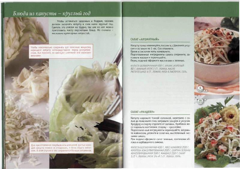 Иллюстрация 20 из 23 для Капуста в натуральном питании - Людмила Потемкина   Лабиринт - книги. Источник: Юта