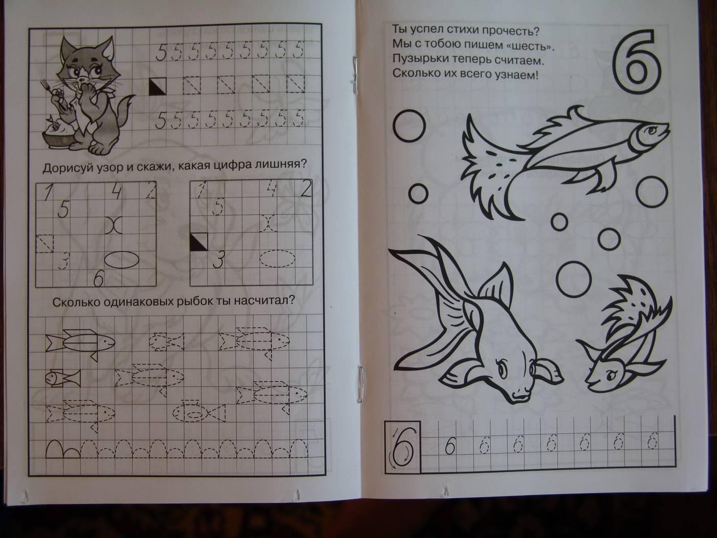 Иллюстрация 1 из 6 для Раскраска и прописи: Счет от 1 до 10 - Полярный, Никольская | Лабиринт - книги. Источник: Лаванда
