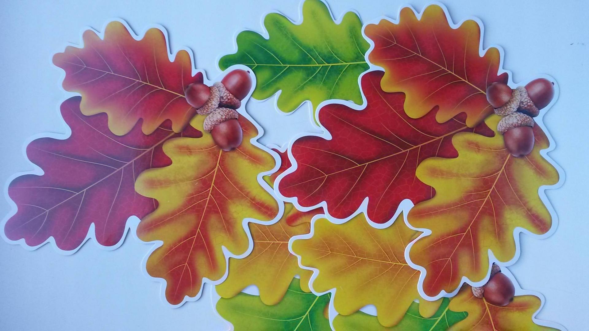 осенние листья дуба картинки для оформления распечатать и вырезать
